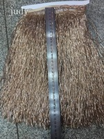 ym0291# 30cm Lace embellished apricot golden tassel DIY Latin dress costume accessory stock fringe trim