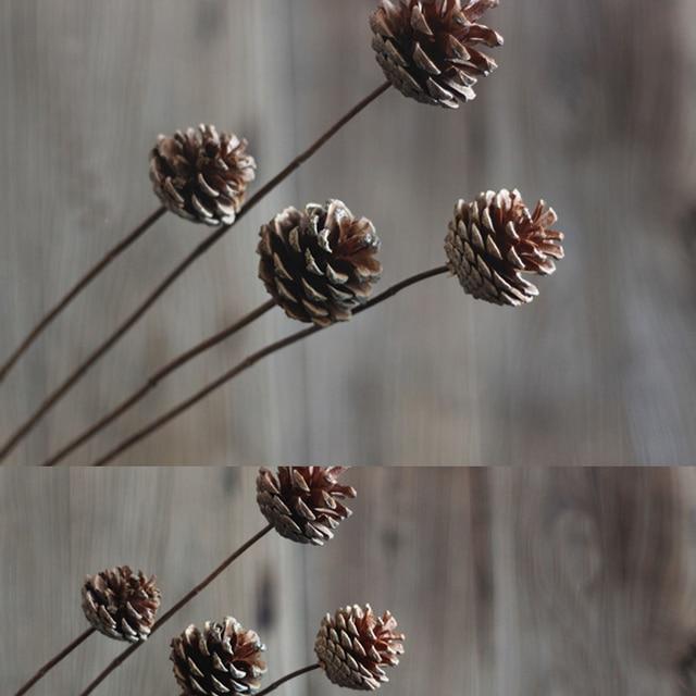 unidades por lote original pineal decoracin de flores naturales de plantas secas pia arreglo floral