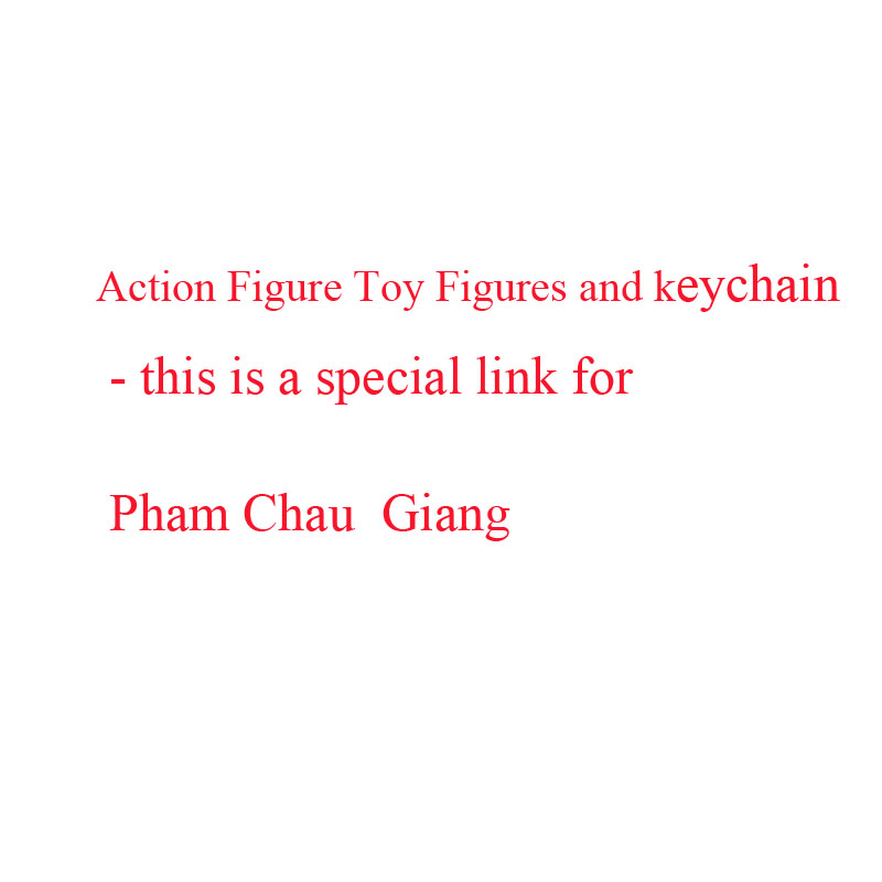 Action Figure Toy Figures and keychain for Pham Chau Giang