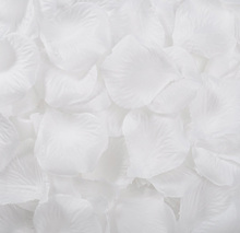 JUMAYO SHOP COLLECTIONS – WEDDING FLOWER PETALS