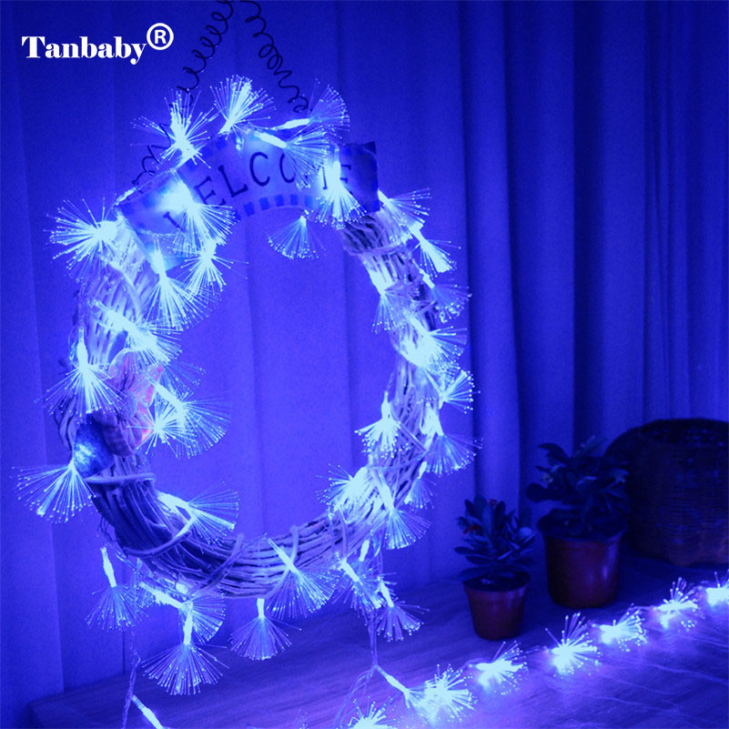 2.5M 10 LEDs Optic Fiber String Light Fairy Rope Lamp AA Battery Operated Ideal For Home Wedding Party Christmas Decor A