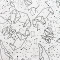 Пенал для карандашей с 36/48/72 отверстиями  школьный холщовый рулонный чехол  сумка для макияжа  созвездия  кисточка  пенал  школьный пенал