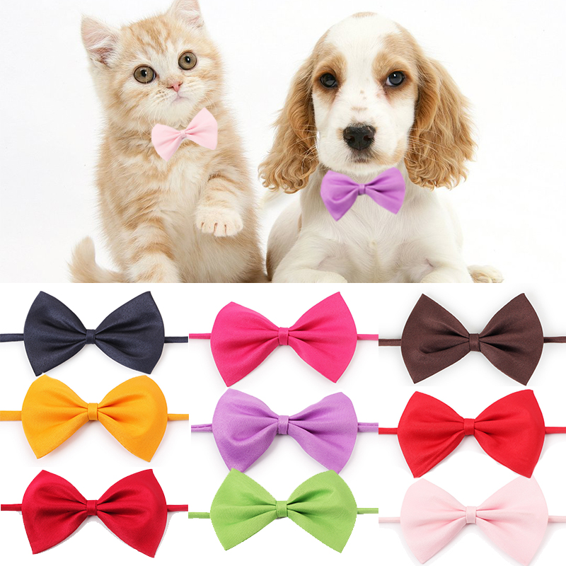 Fashion font b Pet b font Cat Dog Collar Bow Tie Adjustable Neck Strap Cat Dog