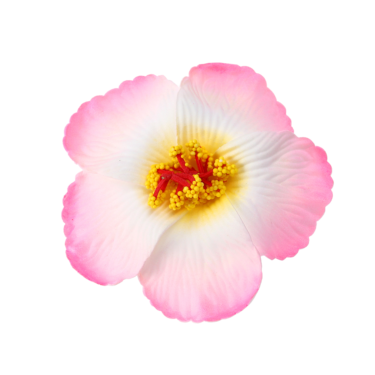 Buy dried hibiscus flowers and get free shipping on aliexpress izmirmasajfo