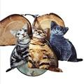 Los niños de la novedad carpeta de la Marca Nueva Moda de Dibujos Animados Cute Cat Face Caja de la Moneda del Monedero de la Cartera de cremallera niños Maquillaje Buggy Bag bolsa