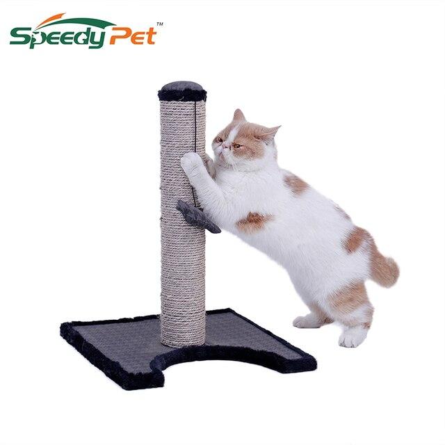 jouet chat gratuit