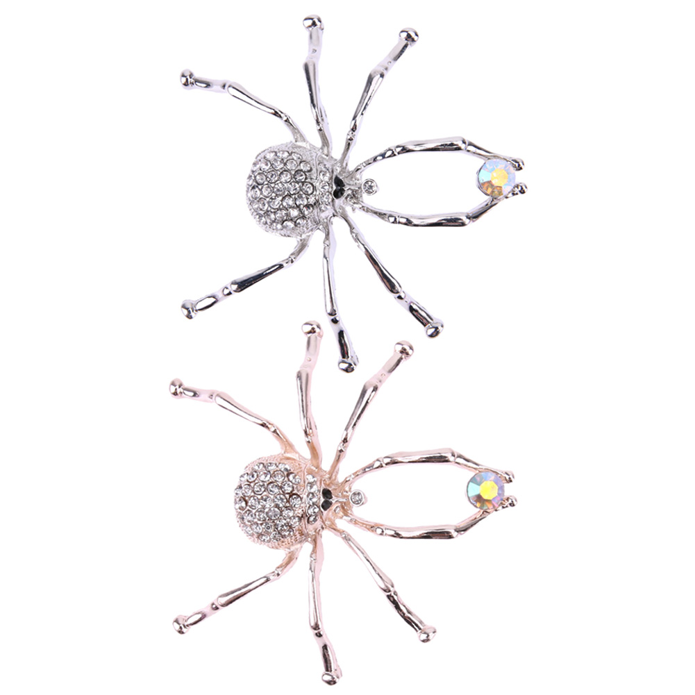 Alloy D-boarded Spider Brooch