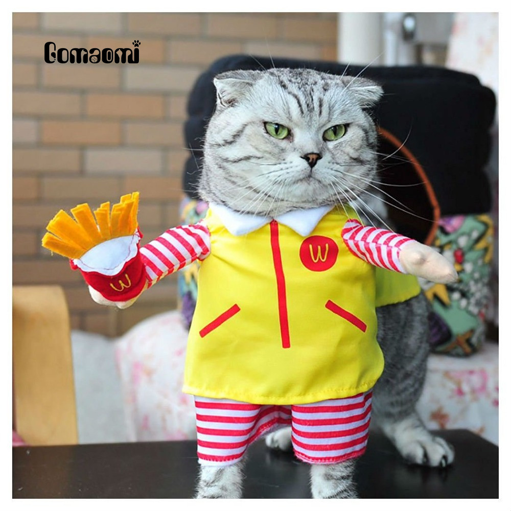 gomaomi cute pet dog cat costume suit puppy clothes party halloween dress in cat clothing from. Black Bedroom Furniture Sets. Home Design Ideas