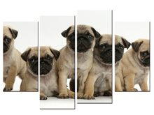 4 pieces / set abstract Fashion Five Animal Dog Canvas Big Print Poster Wall Picture Home Decor Painting(China)