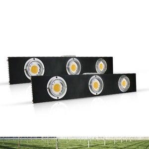 Image 3 - CREE CXB3590 300W COB Dimbare LED Grow Light Full Spectrum LED Lamp 38000LM = HPS 600W Groeien Lamp indoor Plant Groei Verlichting