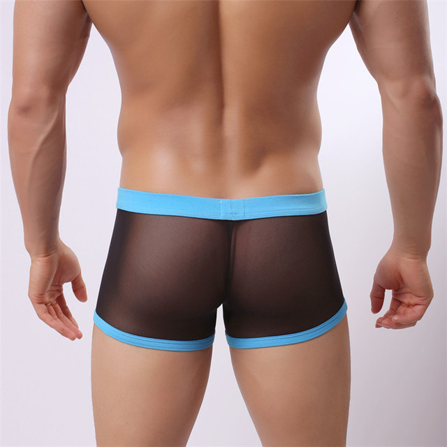 Aliexpress.com : Buy Men Sexy Transparent Boxer Underwear Men ...