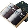 140207/Мужской треугольник боксеры брюки/мужская underwear дышащие/Высокое качество волокна бамбука талии чистый цвет
