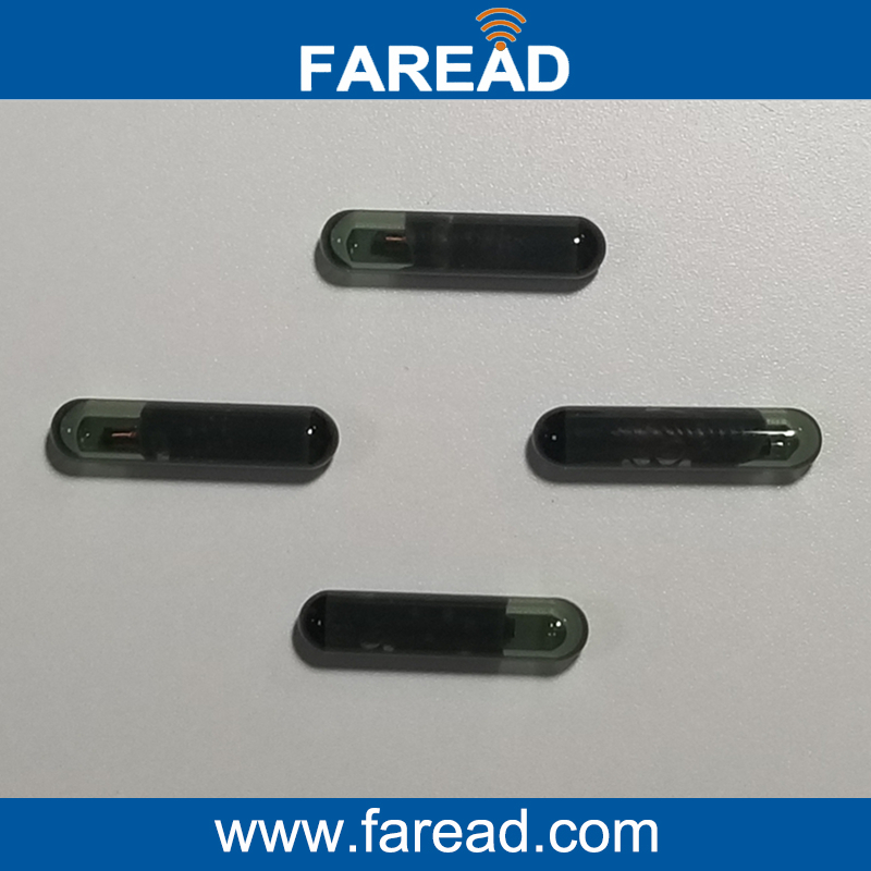 Free Shipping LF Glass tag 3*13mm RFID microchip for Identification 125KHZ hw v7 020 v2 23 ktag master version k tag hardware v6 070 v2 13 k tag 7 020 ecu programming tool use online no token dhl free
