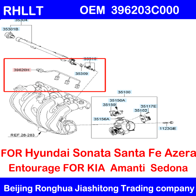 NEW Fuel Injector Wire Harness FOR Hyundai Azera Entourage Santa Fe Sonata  Veracruz FOR Kia Amanti Sedona3.5L 3.8L V6 396203C000|Fuel Injector| -  AliExpress | Hyundai Accent Injector Wiring Diagram |  | AliExpress