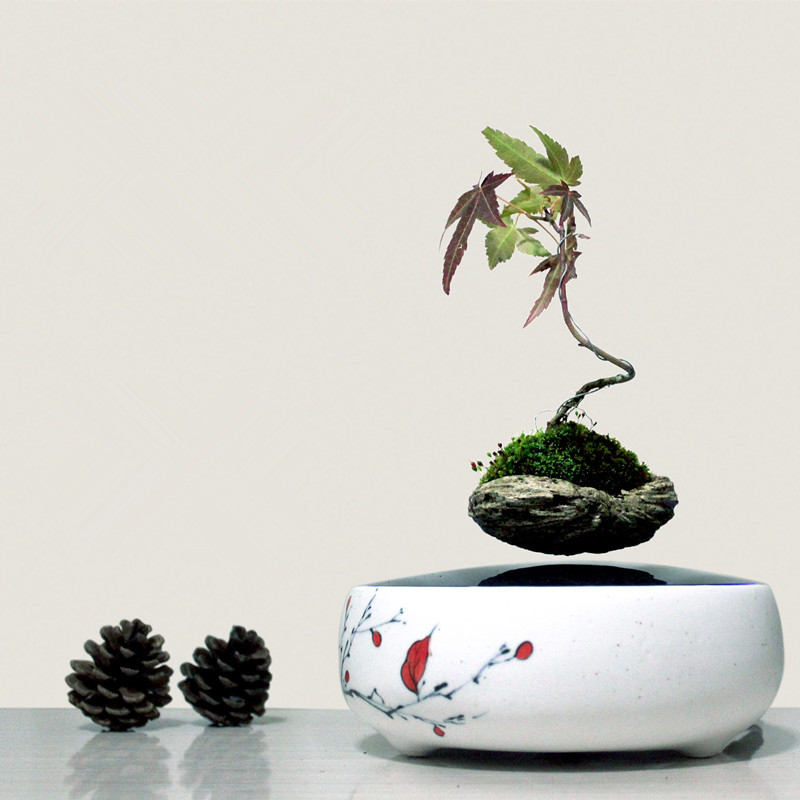 2016 high tech product magnetic levitation air bonsai no plant suspension flower pot - Pot de fleur levitation ...