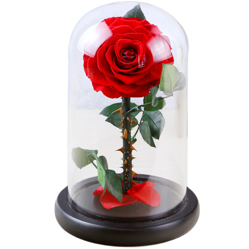 F Everlasting Dried Flower Glass Cover Rose Valentine's Day Gift for Wife Girlfriend Single Rose Wedding Flowers with Nice Box