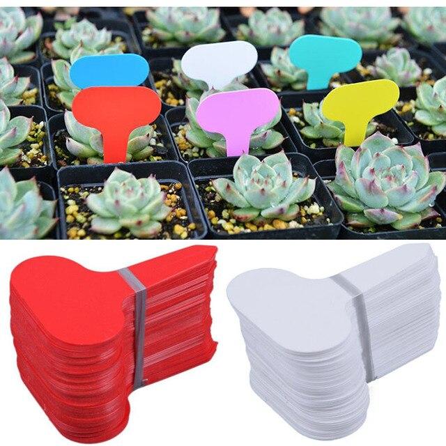 50 pz Nursery Premium Etichetta di Plastica Tipo di Impianto T Etichetta Pianta