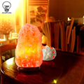 Himalayan Rock Salt Lamp Dimmer Switch Natural Crystal Night LED Light Indoor