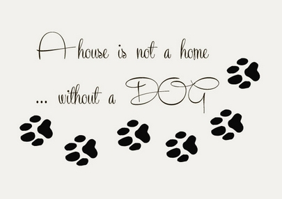 08338833cd36 Pet Shop Vinyl Wall Decal Dog Quote Paw Prints Pet Home Interior Lettering  Mural Wall Sticker
