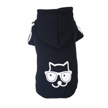 Cute, Warm Winter Sphynx Cat Hoodie / Sweater / 3 Colors