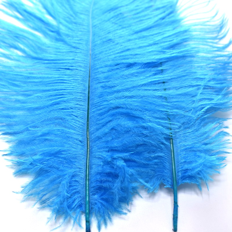 Wholesale cheap 100pcs lot 25 30cm ostrich feathers for crafts plume DIY wedding feathers crafts decoration party accessories in Feather from Home Garden
