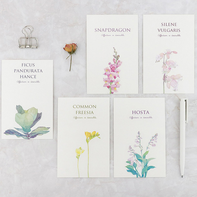 30pcsbox mirabell gardens postcard flowers bouquet greeting card christmas new year card birthday message