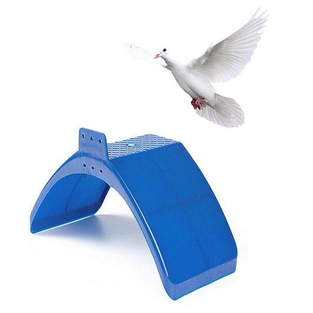 anel em torno da perna dos pássaros
