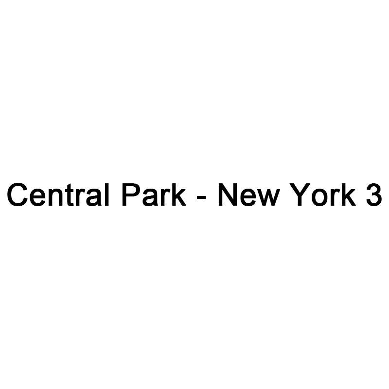 5D Diy Carré Plein Diamant Peinture Point De Croix Central Park-New York 3 diamant Broderie Mosaïque Strass Couture
