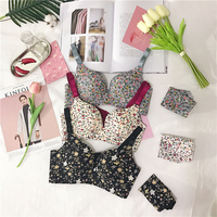 Young Girls Summer Flower Colorful Underwear Bra Set Lingerie Female A Piece Of Seamless Collection