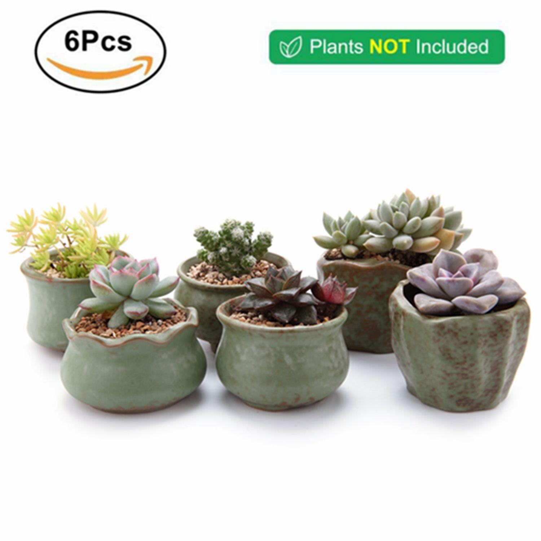 Ceramic Korea Flowerpot For Cactus Succulent Planter Plant Pot