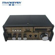 Frankever Hi Fi DC12V AC200V 240V High Quality Digital Car Audio Amplifier Subwoofer Free Shipping AMP