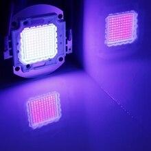 Chip Led de alta potencia, 100 W, luz ultravioleta púrpura (UV 395 ~ 400nm) SMD COB Light 100 W, Bombilla de Ultravioleta