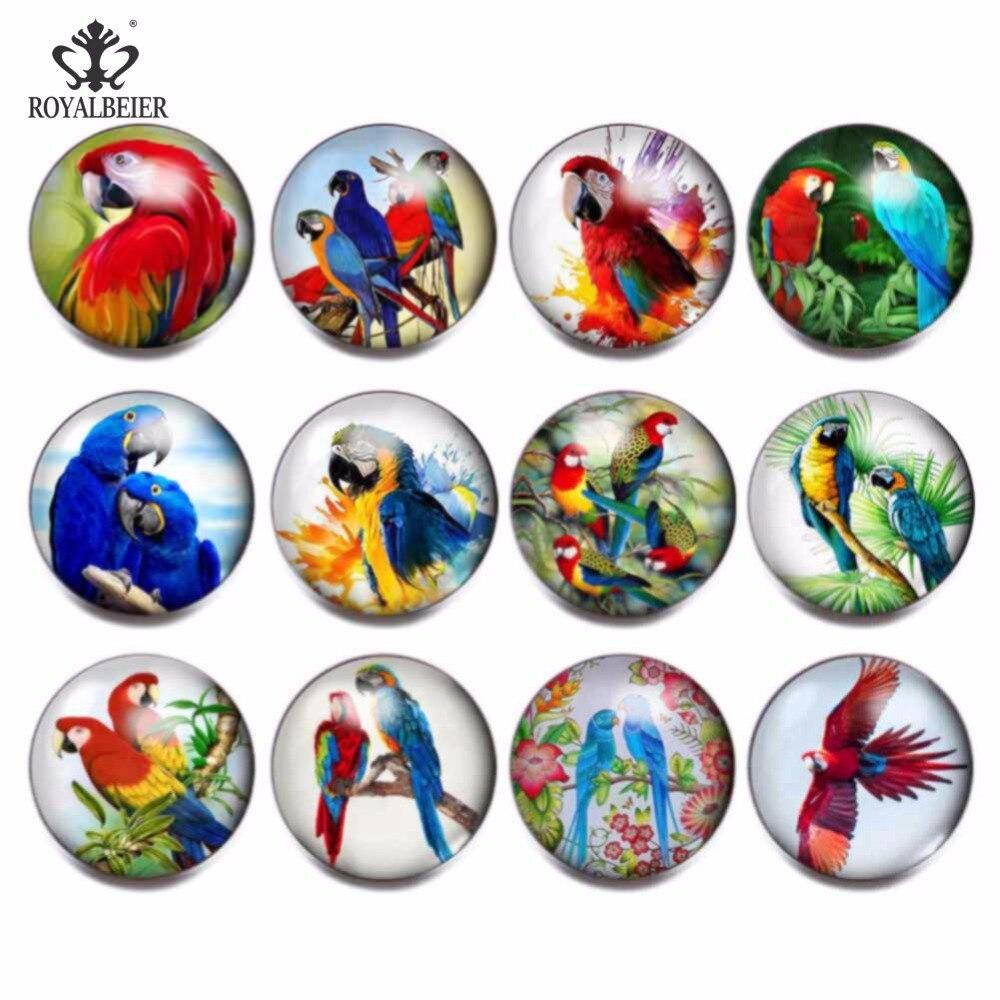 RoyalBeier 12pcs/lot Parrot Theme Glass Charms Snap Button Jewelry 18mm For 20mm Snaps Bracelet Snap Jewelry KZ0831