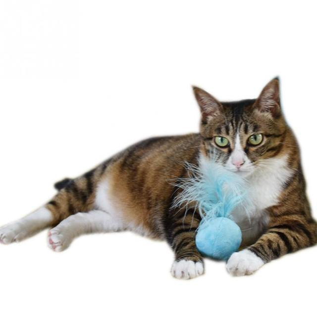 1 Pc Colore Casuale 5 centimetri Divertente Pet Gatto Peluche Catnip Sfera Con C