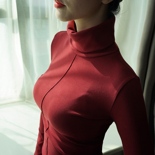 Soft Korean Style Skinny Turtleneck 2
