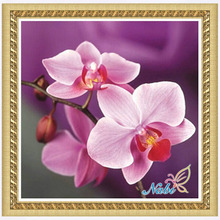 flower orchid photo 5d diy beadwork 0058R - Round Diamond embroidery cross stitch diamond mosaic painting