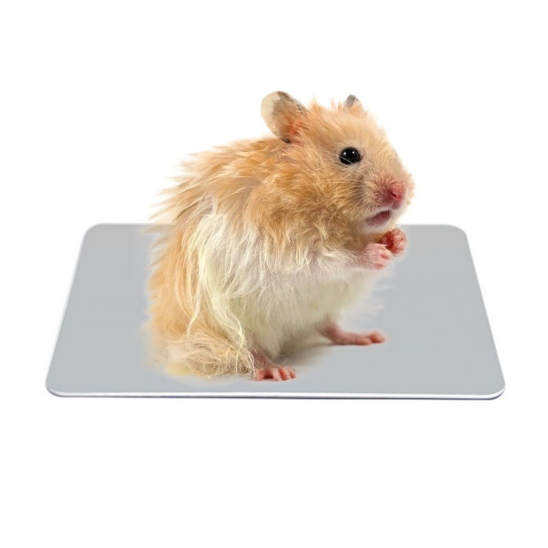 Pet Hamsters Radiating Plate Cool Ice Pad Small Large Radiating Plate Summer Bed Cooling Sleeping Kennel Aluminum S M L