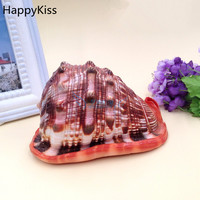 HappyKiss A screw wanbao screw Natural small conch shells seashells furnishing articles in aquariums baby conch sea big conch