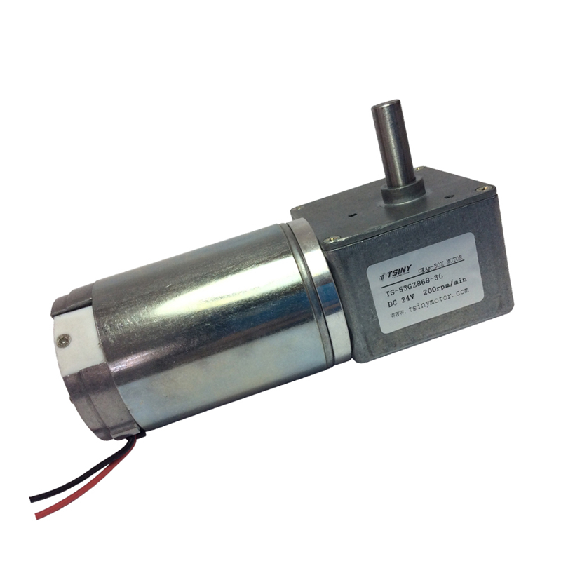 53GZ868 Electric DC Worm Gear Motor 12V 100Rpm 24V 200Rpm High Torque DC Motor Reducer With Self locking Function For DIY Hobby