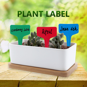 Image 4 - 50/100/300pcs Plastic T type Plant Marker Labels Colored White Blank Labels For Nursery Garden Plant With Marker Pen