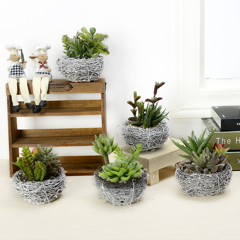 Plants For Tiny Pots: New Arrival Mini Potted Nest Round Simulation Plants