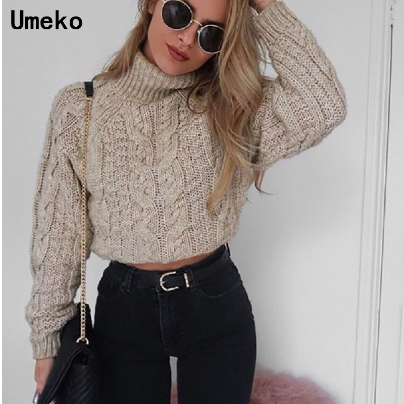 463d526bb Umeko Women Crop Top Sweater Turtleneck Winter Tops for Women Clothes Sexy  Knit Sweater Cashmere Long Sleeve Fashion 2018 Winter-in Pullovers from  Women s ...