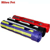 Pet Tunnel Cat Play Tunnel Foldable 2 Holes 125CM Cat Tunnel Play Crinkle Sound Cat Toy