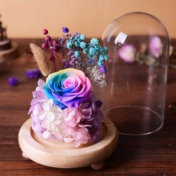 Sweet Preserved Flower Gift Valentines Day Gift Birthday Gifts Natural Dried Flowers Rose Present With Glass Cover Home Decor 1