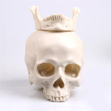P Flame sculpture various types of skull carving flower pots antique storage jars Halloween decoration resin