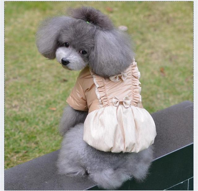 Free Shipping Chicdog Cheap Dog Clothes Cute Warm Jacket Pet Winter