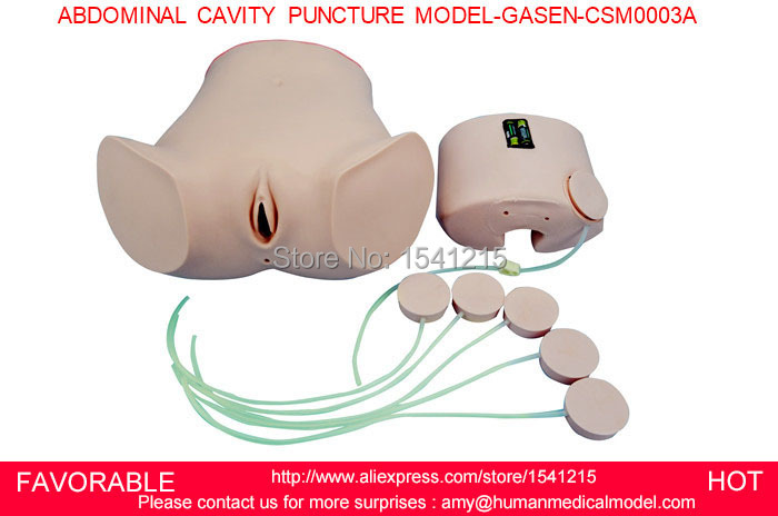 NURSING TRAINING MANIKIN MEDICAL SIMULATION MODELS MEDICAL TRAINING MANIKINS ABDOMINAL CAVITY PUNCTURE MODEL-GASEN-CSM0003A цена