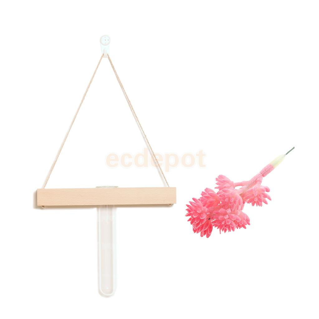 Buy test tube flower vase and get free shipping on aliexpress reviewsmspy