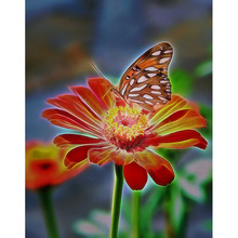 100% Full 5D Diy Daimond Painting Cross-stitch Butterfly Flower 3D Diamond  Rhinestones s Embroidery