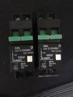 South Africa 60A 1 Pole Mini Type Earth Leakage Circuit Breaker MCB
